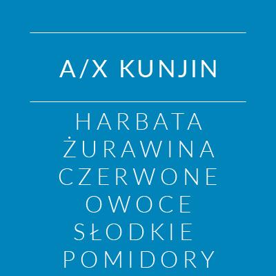 axkunjin_2