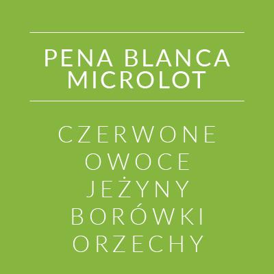 panablancamicrolot_2