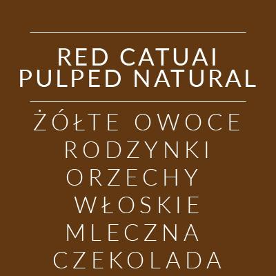 redcatualpulpednatural_2